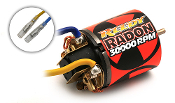 Reedy Radon 17 Turn Brushed Motor